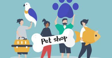 Store For the Dogs Discount Code, Review & Coupon 2020